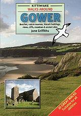 Walks Around Gower, Swansea, Wales - Kittiwake